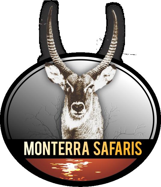 Monterra Safaris